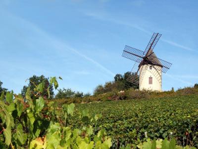 Primeira fotogarfia publicada no artigo Uma breve introdução a região da Borgonha. Muito legal!