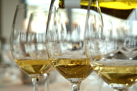 Vinho branco, perfeito, sem turbidez.